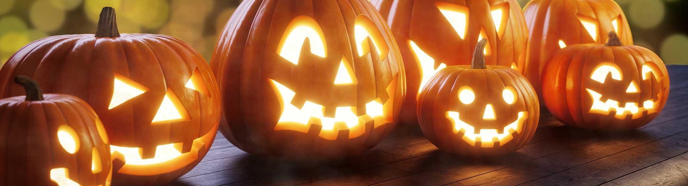 Schaurig-schöne Deko-Ideen für Halloween | Agrarfrost